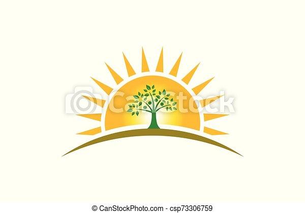 La familia del árbol en el logotipo del sol. Familia de cuatro personas árbol fuerte - csp73306759