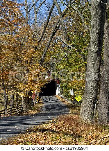 El camino del otoño cubrió el puente - csp1985904