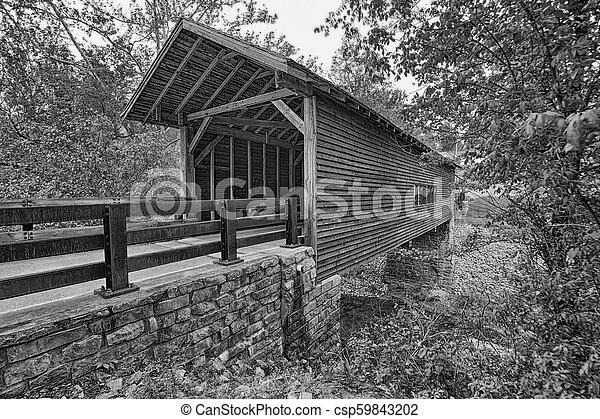 Cubierto puente de madera - csp59843202