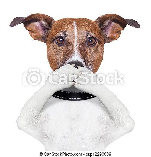 Cubre la boca de perro - csp12290039