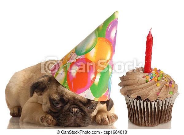Perro de cumpleaños - csp1684010