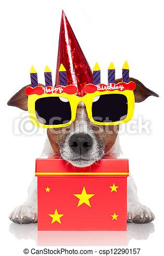 Perro de cumpleaños - csp12290157