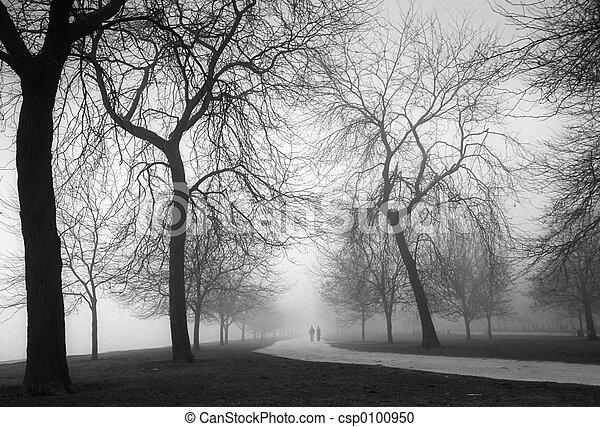 Día de niebla - csp0100950