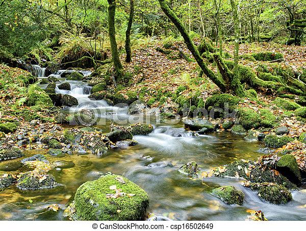La corriente de Dartmoor - csp16502649