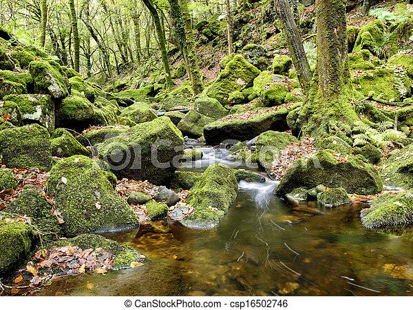 La corriente de Dartmoor - csp16502746