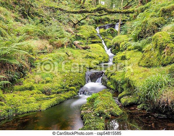 La corriente de Dartmoor - csp54815585