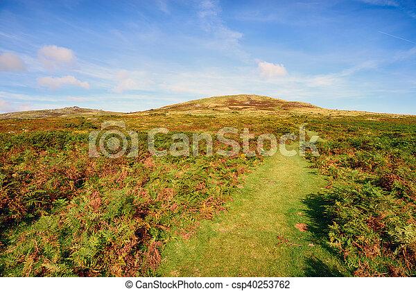 Dartmoor en Devon - csp40253762