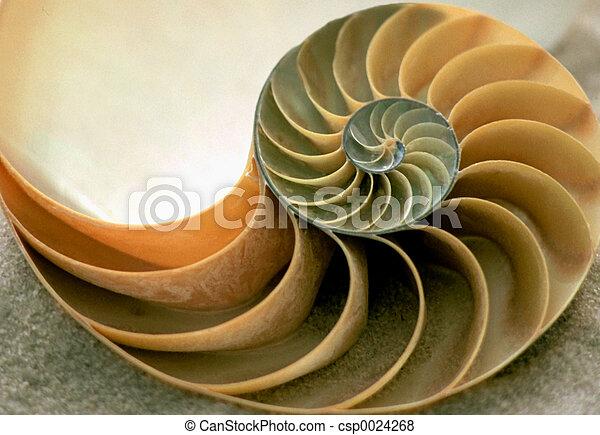 Dentro de Nautilus - csp0024268