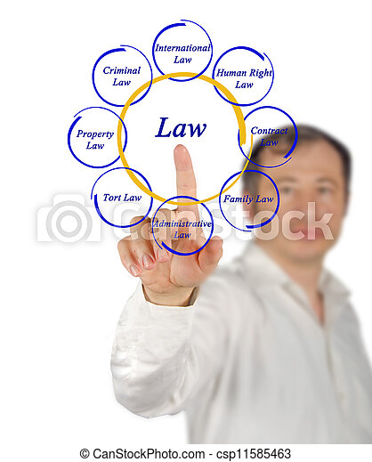 Diagrama de la ley - csp11585463
