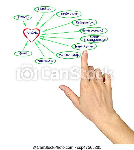 Diagrama de salud - csp47565285