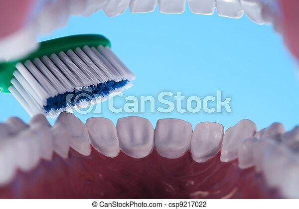 Dientes, objetos dentales - csp9217022