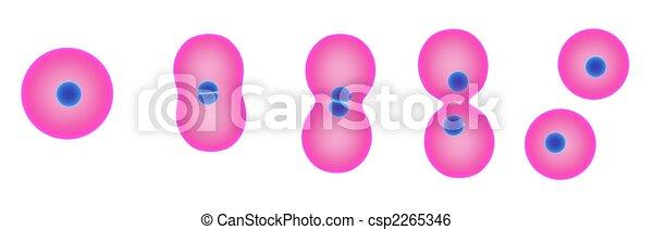 División de celdas - csp2265346