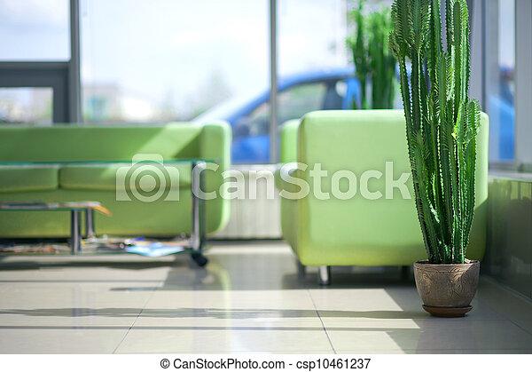 Dos sofás verdes y cómodos en el interior - csp10461237