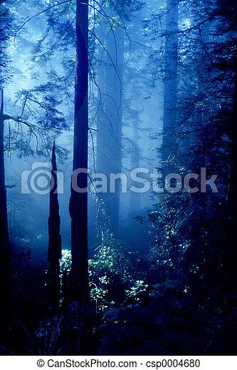 El bosque de Oregon - csp0004680