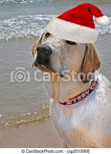 El cachorro de Navidad - csp2015908