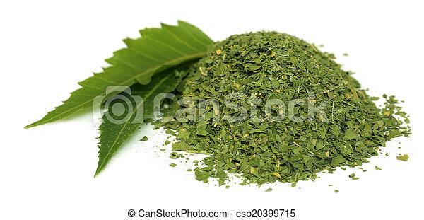 El neem medicinal se va con polvo seco - csp20399715