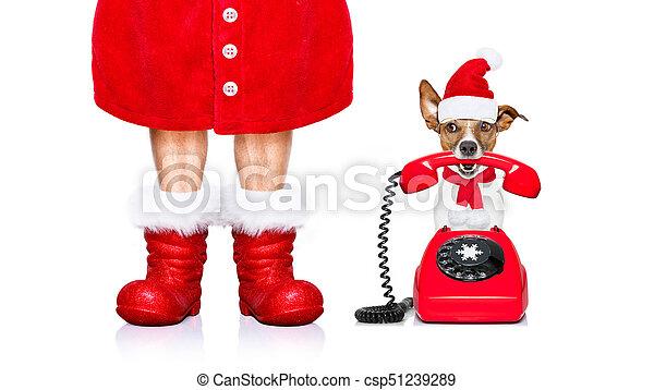 El perro de Santa Claus de Navidad al teléfono - csp51239289
