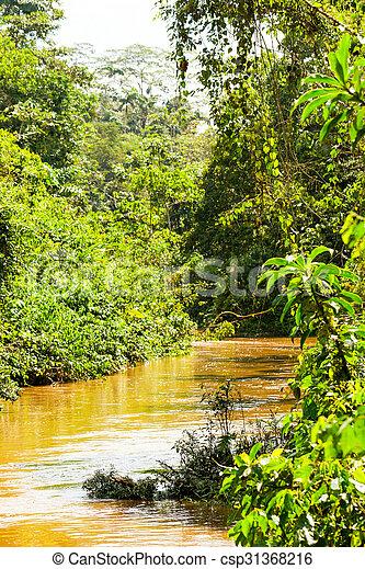 El río Amazonas es rico en ecuador - csp31368216