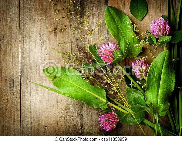 Hierbas sobre madera. Medicina de hierbas. Antecedentes Herbales - csp11353959