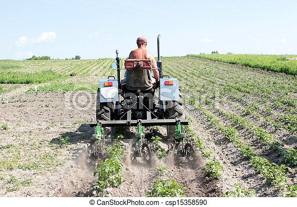 Equipos especiales en un tractor para marihuana en la agricultura - csp15358590