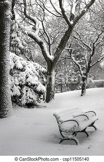 Escena de invierno - csp11505140