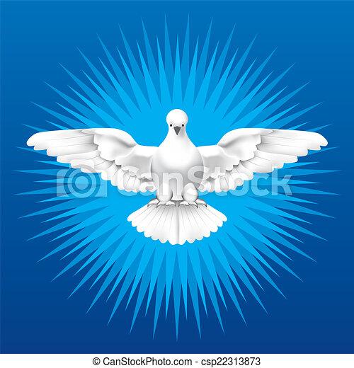 Espíritu Santo - csp22313873