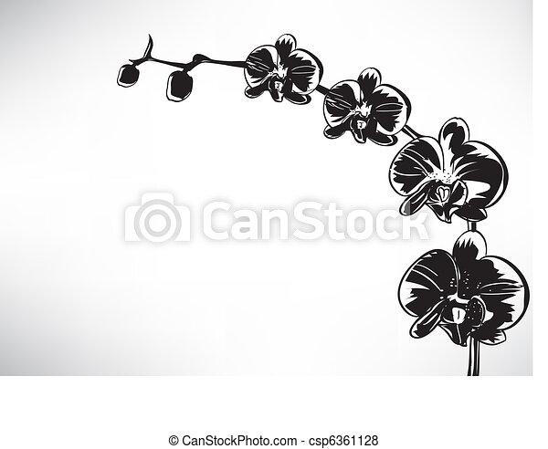 Orquídea estilizada - csp6361128