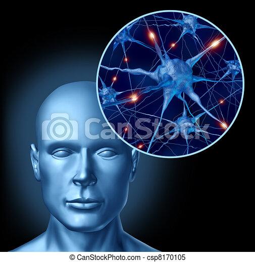 Estimulación mental - csp8170105