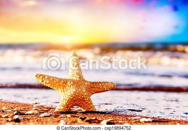 Estrellas de mar en la playa exótica al atardecer cálido, olas del océano. Viajes, vacaciones, conceptos de vacaciones - csp19894752