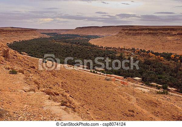 Una vista panorámica de un valle fértil y oasis en Saraha Desert - csp8074124