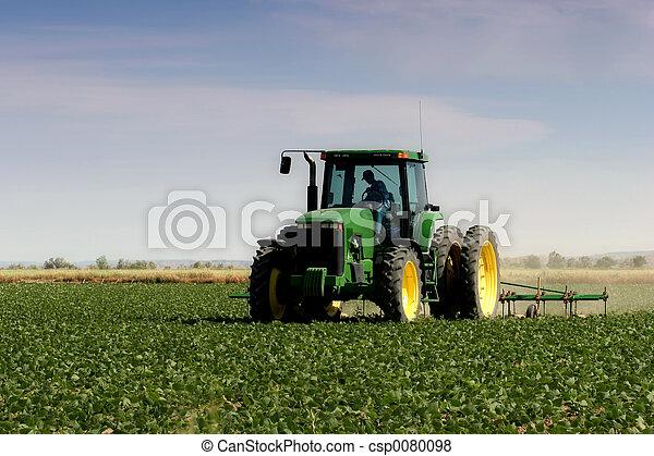 Farmer arando el campo - csp0080098