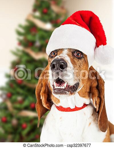 Feliz Navidad Santa perro por árbol - csp32397677