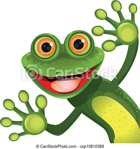 Feliz rana verde - csp10810389