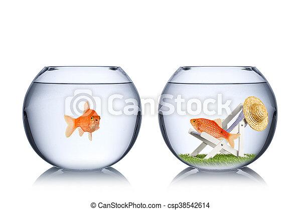 El concepto de las vacaciones de pescado - csp38542614