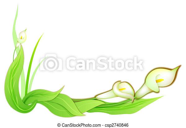 Flor de Calla - csp2740846