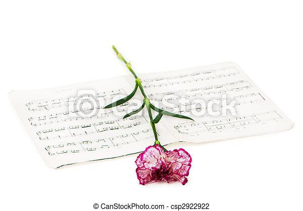 El concepto Romatico: flor de claveles rojos en notas musicales - csp2922922