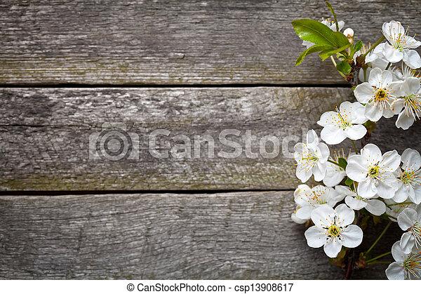 Flores de primavera - csp13908617