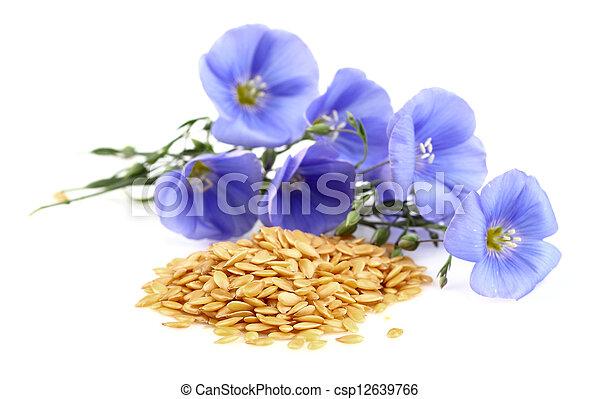 Semillas con flores - csp12639766