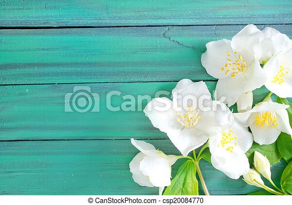 Flores - csp20084770