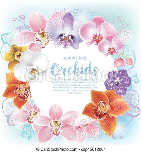 Una tarjeta de felicitación con orquídeas - csp45612064