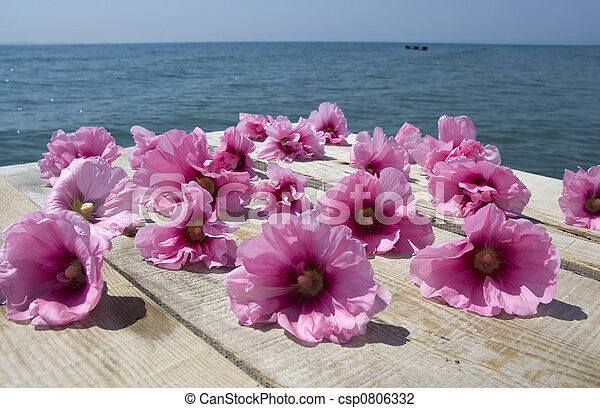 Flores tropicales - csp0806332