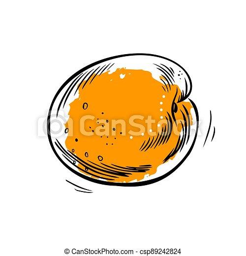 fondo., albaricoque, vector, illustration., blanco, hand-drawn - csp89242824