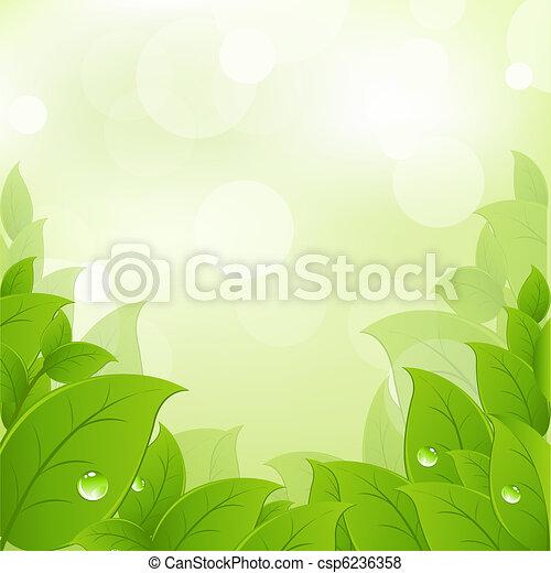 Hojas frescas y verdes - csp6236358