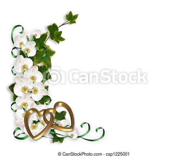 Orquídeas e hiedra - csp1225001