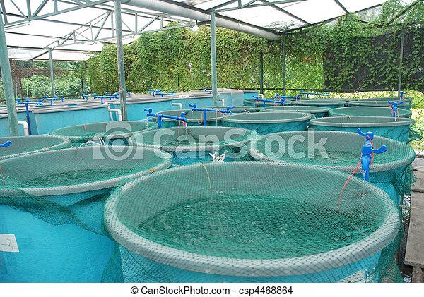 Granja de acuicultura agrícola - csp4468864