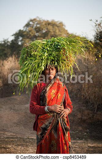 Una mujer india del pueblo que lleva un título - csp8453489