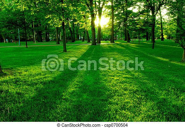 Green Park - csp0700504