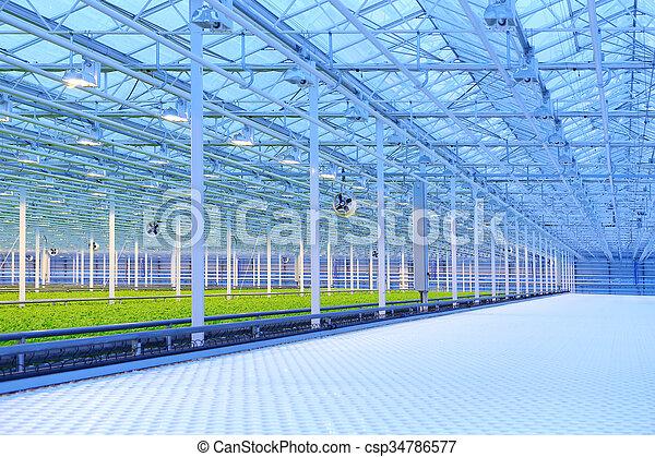 Greenhouse - csp34786577
