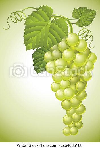 Un cúmulo de uva con hojas verdes - csp4685168