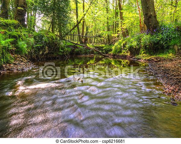 Hermosa imagen desde muy bajo punto de vista a lo largo de la corriente fluyendo río arriba con abundante follaje vibrante en ambos bancos y luz solar iluminando el fondo - csp6216681